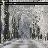 Sonata for Violin and Piano No. 1 in D Major, Op. 12: II. Tema con variazioni - Andante con moto