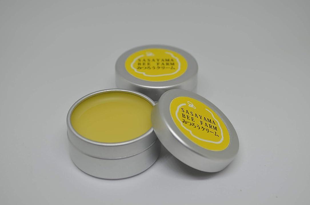 そこから楽しませるスポーツささやまビーファーム ミツロウクリーム 養蜂家の作ったハンドクリーム (5個)