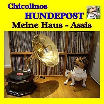 Chicolinos Hundepost (Meine Haus - Assis)