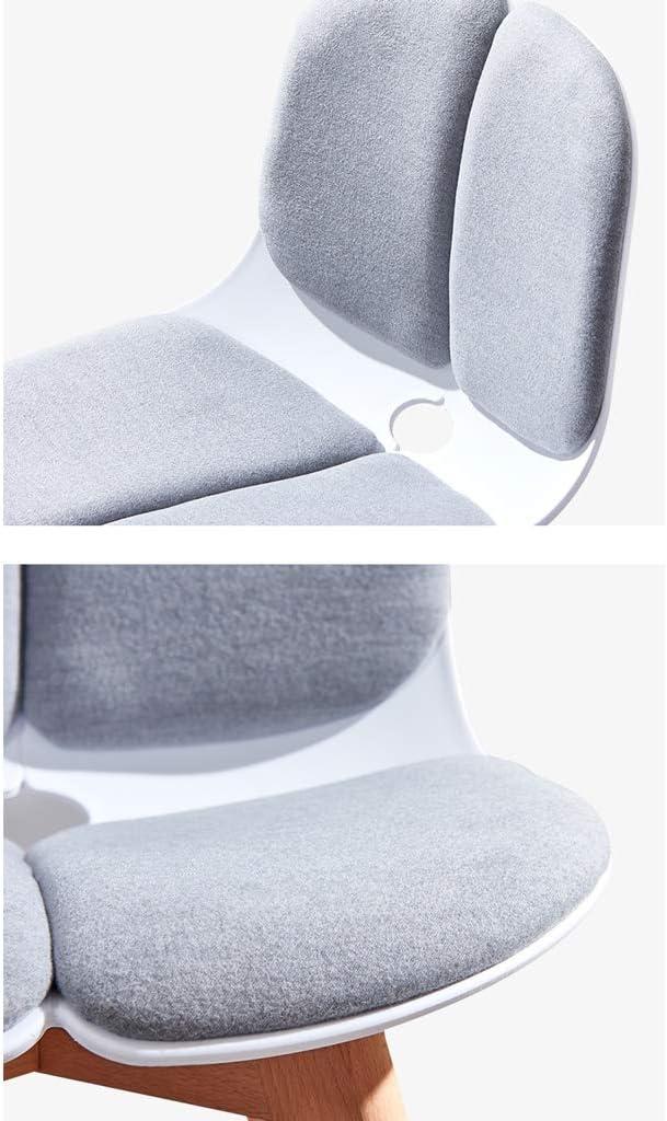 LF Chaise de Salle, Chaise de Bureau Simple, créative Dossier, Chaise Loisirs, Maison Adulte Chaise de Salle Simple (Color : Green-B) Gray-a