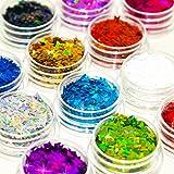 Glitter Wenida 12 colores mariposa holográfica...