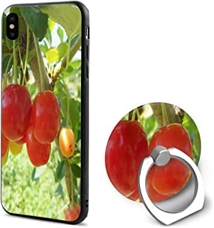 Phone X Case Bonners Ferry Nursery Ring Cell Phone Holder Adjustable 360°Rotation Mobile Phone Stand A Trading Ultra Thin PC Hard Lightweight Protection Cover