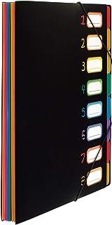 Viquel Rainbow Class - Trieur extensible - Porte document plastique - Organisateur de document - Grande capacité - 8 posit...