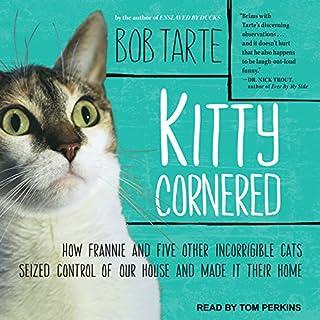 Kitty Cornered audiobook cover art
