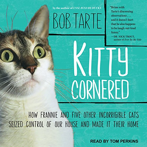 Kitty Cornered  By  cover art