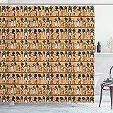 AIDEMEI Cortina de Ducha con Estampado Egipcio Multicolor, Personajes de Dibujos Animados mitológicos de egiptología, ilustración de Historia de Arch Elogy 180X180CM