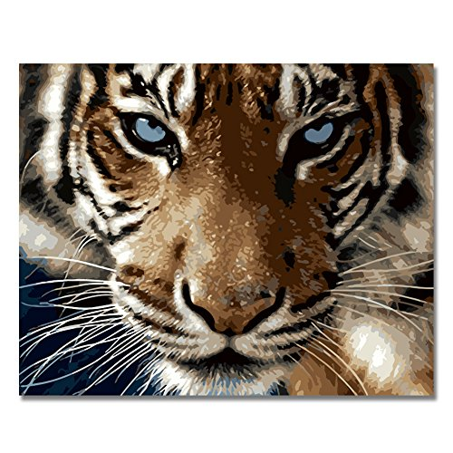 RIHE Holzrahmen, Farbe nach Zahlen DIY Ölgemälde Tiger, der Sie auf Leinwand zeigt Wand-Kunst-Zuhause-Dekoration