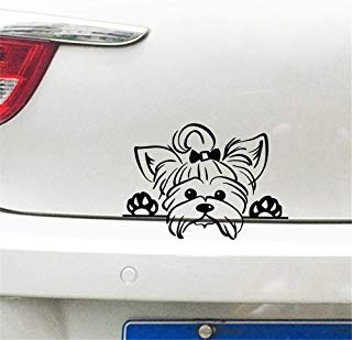 Guduis Wall Decal Sticker Mural Vinyl Arts and Sayings Mural Art Yorkshire Terrier Sticker Decals Car Decor, Puppy Peeking Yorkie Dog Breed Pet Decal for Cup Laptop Decoration