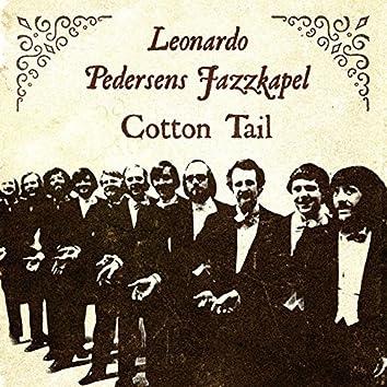 Cotton Tail