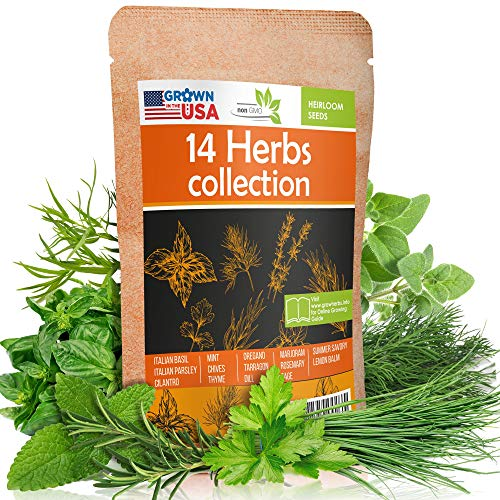 14 Culinary Herb Seeds Pack - Heirloom and Non GMO, Grown in USA - Indoor or Outdoor Garden - Basil, Parsley, Dill, Cilantro, Rosemary, Mint, Thyme, Oregano, Tarragon, Chives, Sage & More