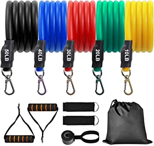 Bisgear 11pcs Resistance Bands Set - Exercise Bands with Door Anchor, Ankle Straps, Carrying Case for Physical Therapy Exercise Stretch Fitness Home Workouts Yoga, Pilates Stackable up to 150 lb