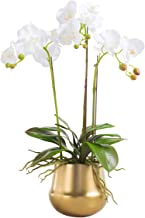 Fudostar Artificial Silk Moth Orchid Flowers Potting in Matte Gold Ceramic Vase, Natural Looking Phalaenopsis Flowers and Greens (Arc-Shaped White)