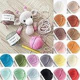 Amigurumi - Ovillo de hilo para ganchillo (20 paquetes multicolores, 100 % algodón, 20 colores surtidos, 20 x 20 g, paquete de 400 g, paquete multicolor 01)