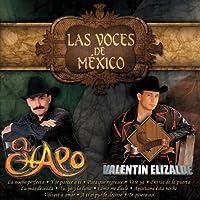 Las Voces De Mexico