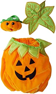 Halloween Pumpkin Teddy Bear Clothes Outfit Fits Most 14