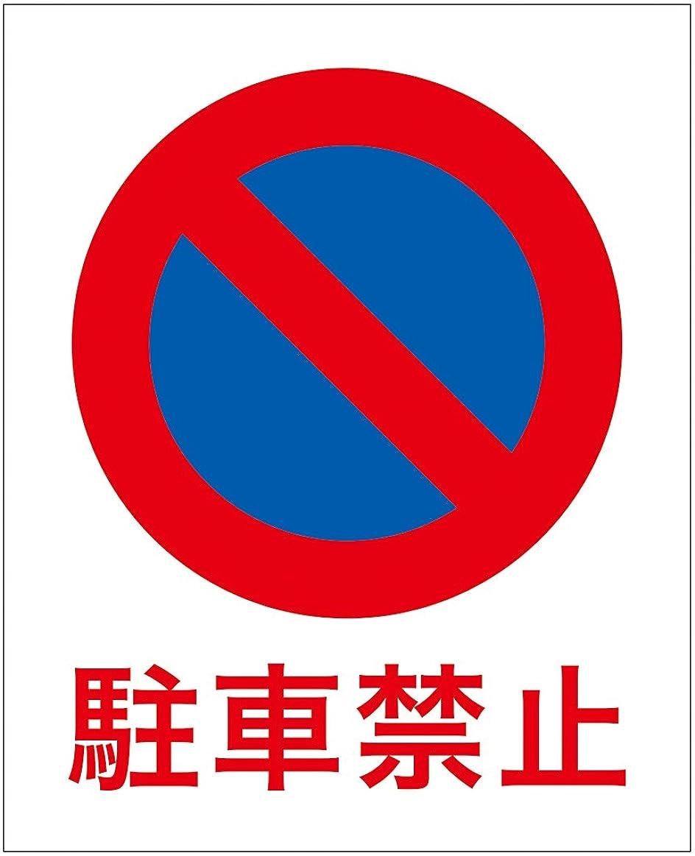 青ローズ準備する「駐車禁止(M)」 床や路面に直接貼れる 路面表示ステッカー 370X300mm