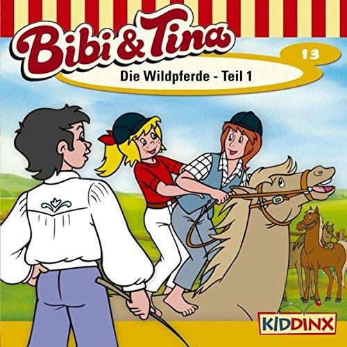 Die Wildpferde 1 audiobook cover art