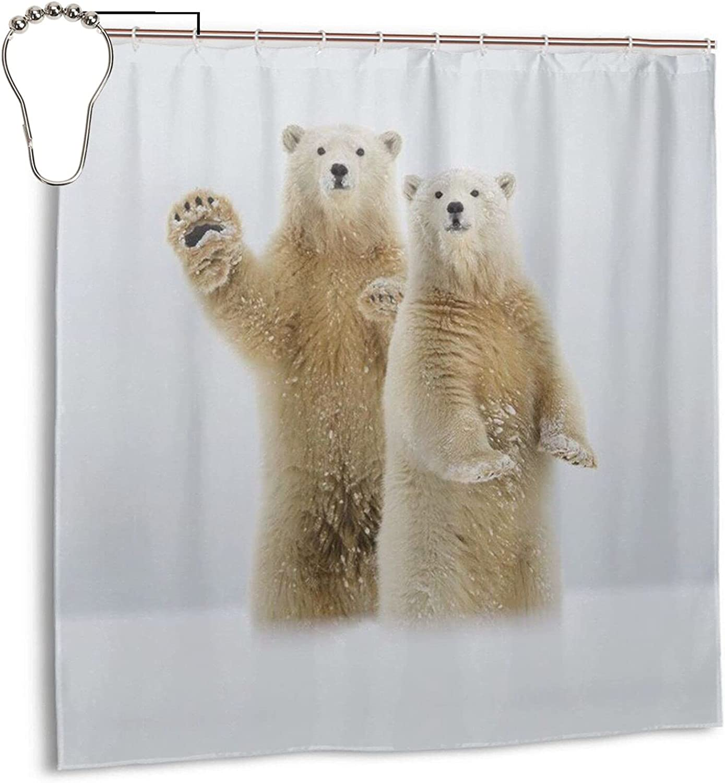 Max 66% OFF Polar Bear Bathroom Miami Mall Shower Curtain 72 Inch No Chemical X Sm