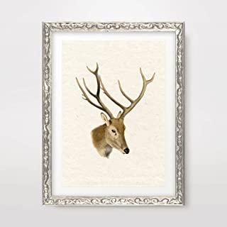 STAG DEER ANTLERS VINTAGE ANIMAL ILLUSTRATION DIAGRAM DRAWING ART PRINT Poster Antique Sepia Neutral Home Decor Design Wall Picture A4 A3 A2 (10 Size Options)