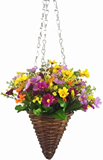 Best daisy hanging basket Reviews