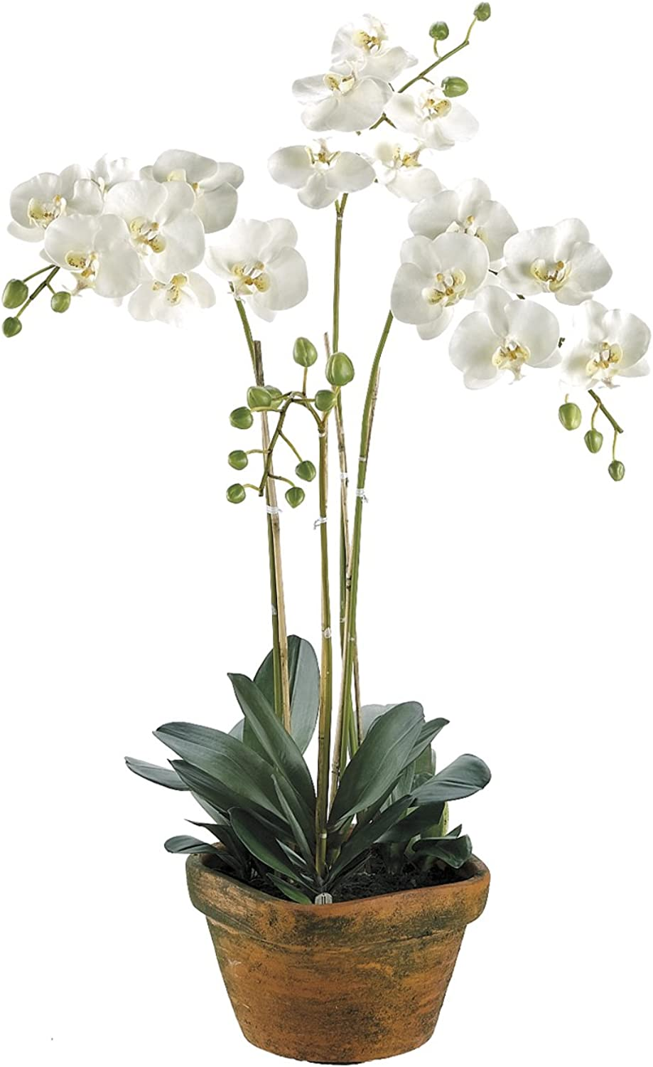 Silk Decor Phalaenopsis Plant, White