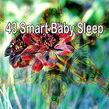 43 Smart Baby Sle - EP