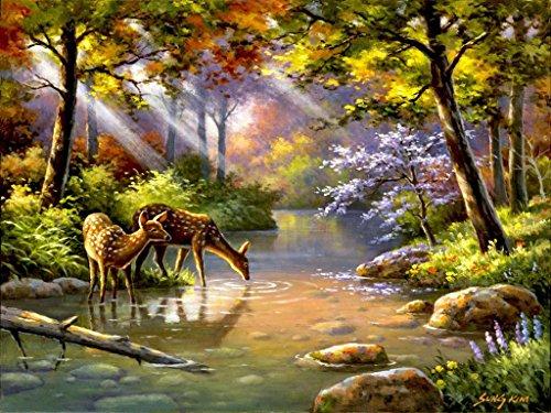 Fuumuui Lienzo de Bricolaje Regalo de Pintura al óleo para Adultos niños Pintura por número Kits Decoraciones para el hogar -Los Ciervos beben Agua 16 * 20 Pulgadas