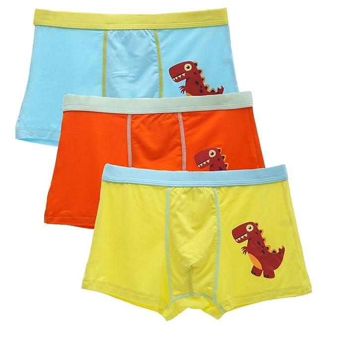 Sammious Boys Underwear 6 Pack Dinosaur Truck Pattern Baby Toddler Boxer Briefs Shorts Cotton Underpants for 2-8 Years Boy
