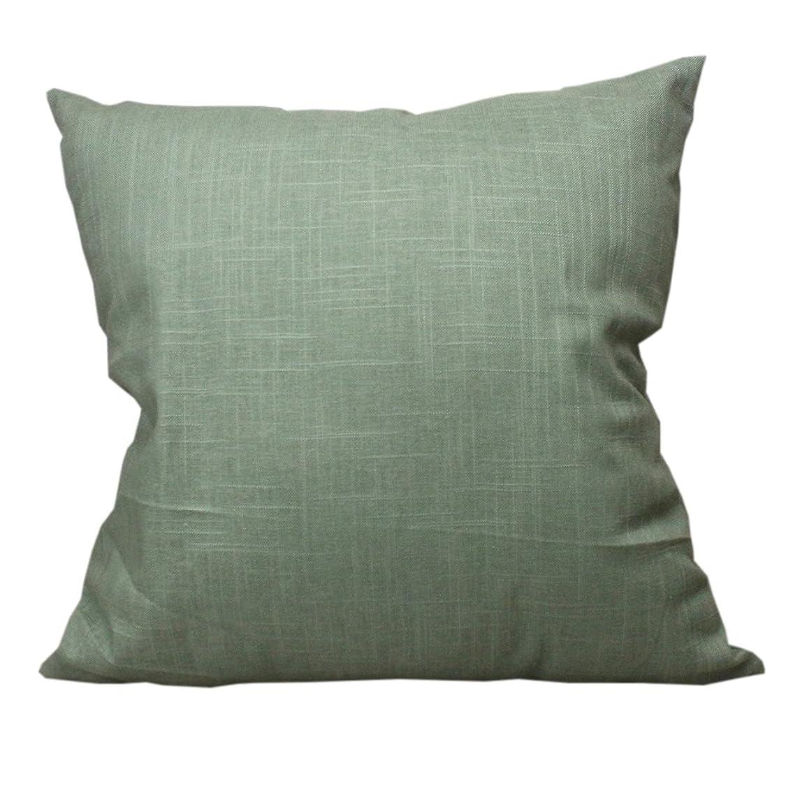 太鼓腹不適当フラッシュのように素早く純色 綿麻 クッションカバー 無地 枕カバー インテリア おしゃれ ソファー 抱き枕カバー (ライトグリーン, 55x55cm)