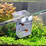 WEAVERBIRD Caja de aislamiento para peces, acrílico, transparente, con 2 ventosas, para acuario