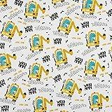 PINSOLA Sweatstoff Meterware | Uni Sweat Stoff | Öko-Tex 100 zertifiziert | Stoff für Sweatshirts, Kleider Trainingsanzüge, Leggings | verschiedene Druckmuster| 1 Stück= 0.5m | Dinosauriers Baggers