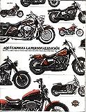 AQUI EMPIEZA LA PERSONALIZACION. HARLEY DAVIDSON 2010 ACCESORIOS ORIGINALES DEL MOTOR Y PIEZAS DEL MOTOR ORIGINALES.