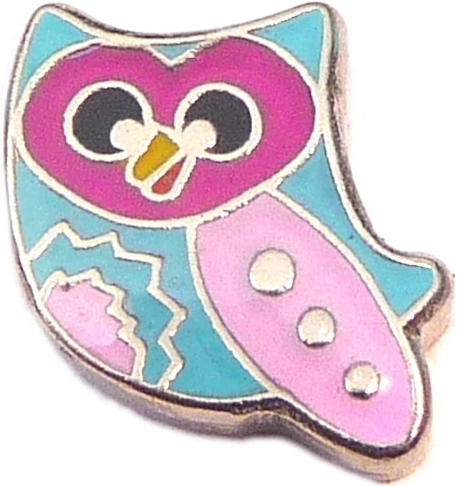 Colorful Challenge the lowest price Owl Floating Locket Direct store Charm