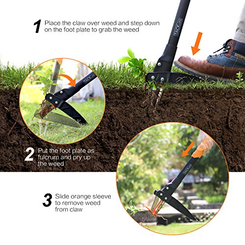 Tool for Permanently Removing Dandelions