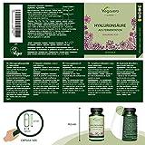 Zoom IMG-1 acido ialuronico vegavero 600 mg