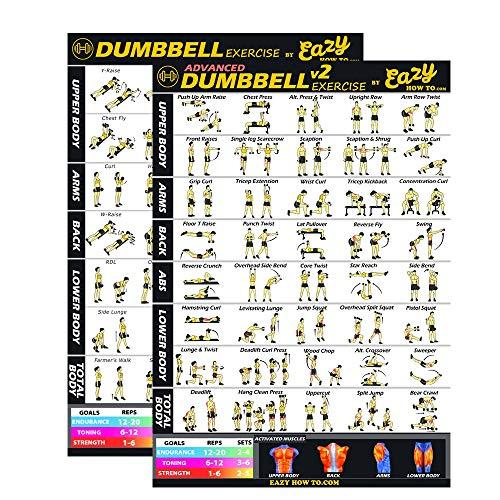 Eazy How To Workout-Poster mit Hantel-Übungen, 51x 73cm, Ausdauertraining, Muskelaufbau und -stärkung, 2 PACK DUMBBELL