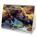 Calendario de mesa DIN A5, calendario 2019, submarino, buceo, peces y mar, edición de magia marina.