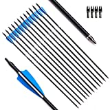 Tiger Archery 30inch Fiberglass Arrow with Replaceable Arrowhead Spine 500 for Recurve and Compound Bow Hunting and Practice Hunting (Blue White, 30)