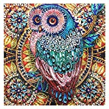 <span class='highlight'><span class='highlight'>nuoshen</span></span> 5D Diamond Painting Kits,Diamond Arts Craft Gift Full Drill Crystal Rhinestone Embroidery for Home Wall Decoration,11.8 * 11.8 inch(Owl)