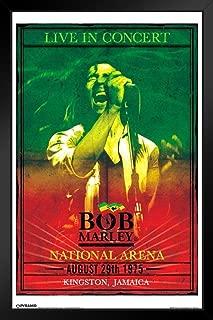 Pyramid America Bob Marley Concert Black Wood Framed Art Poster 14x20
