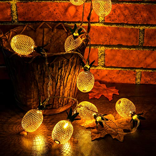 Led String Light Battery Powered Pineapple Shaped 10 LED Fairy Decorative String Lighting for Home Wedding Party Bedroom Birthday Decoration (Warm White)