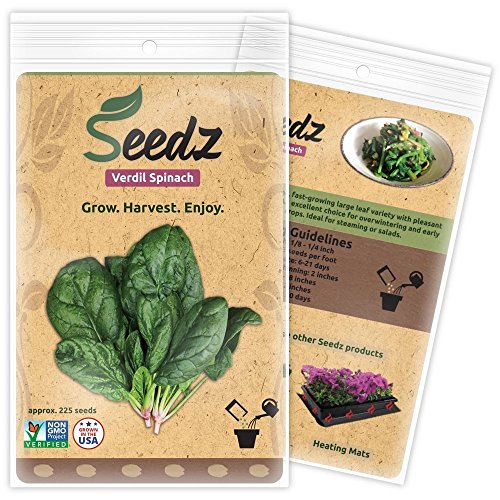 Organic Spinach Seeds (APPR. 225) Verdil Spinach - Heirloom Vegetable Seeds - Certified Organic, Non-GMO, Non Hybrid - USA