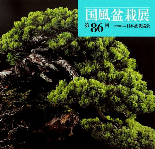 86th Kokufu Bonsai Exhibition (2012) ISBN: 414040261X [Japanese Import]