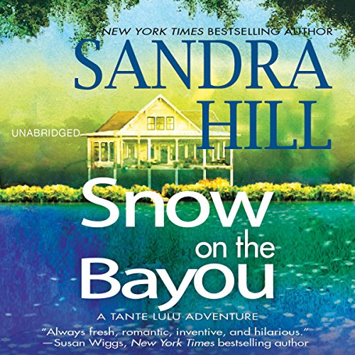 Snow on the Bayou audiobook cover art