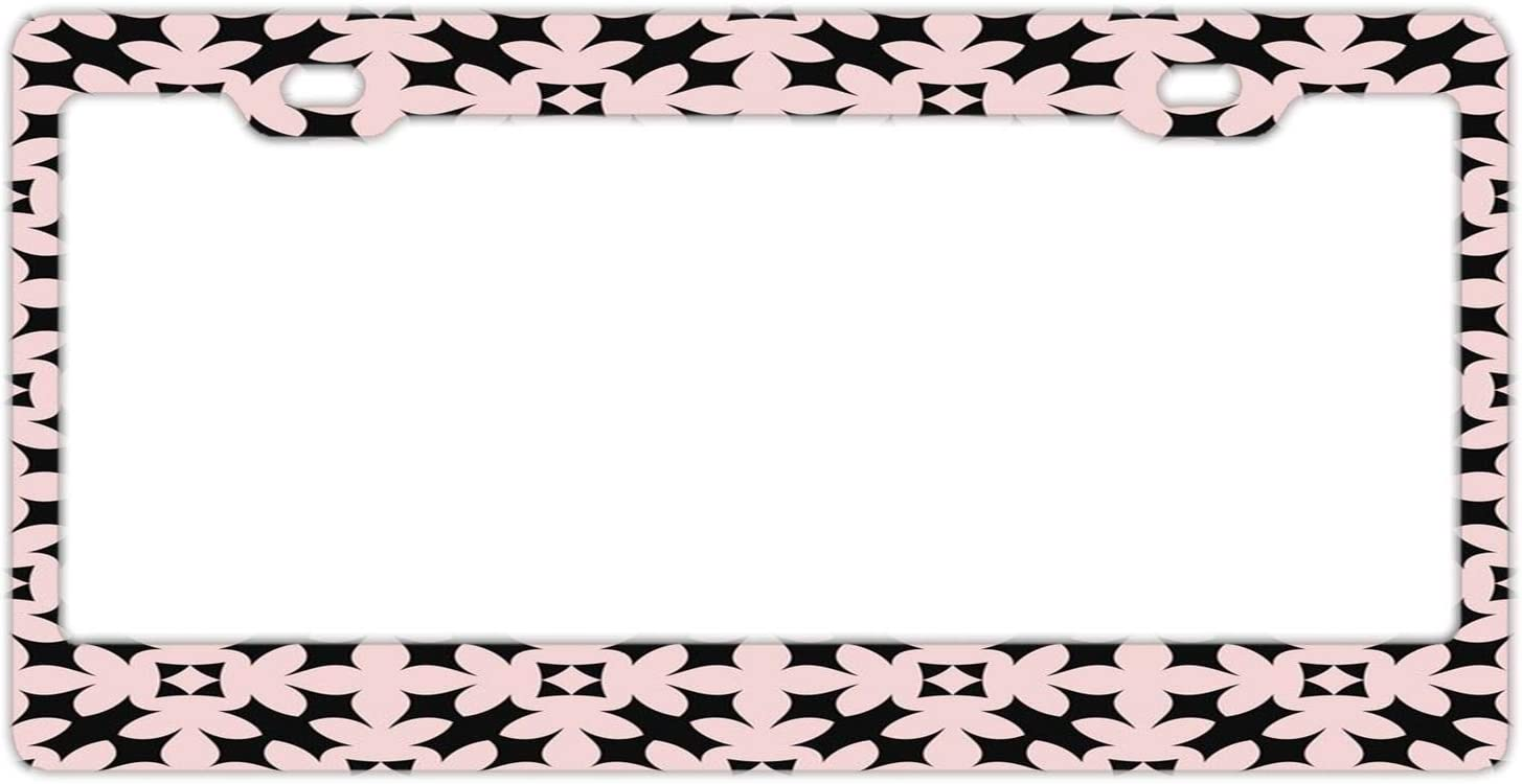 Al sold out. DKISEE Retro Detroit Mall Flora License Plate Frame Cover US CA Standard for