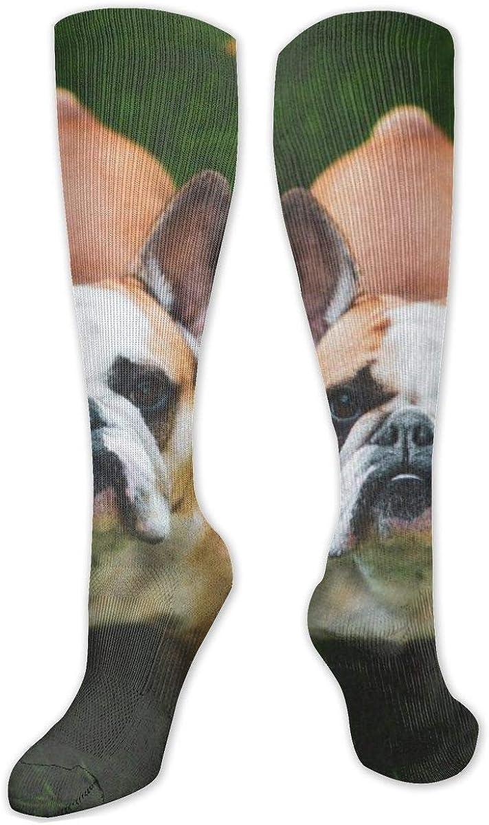 French Bulldog On Grass Knee High Socks Leg Warmer Dresses Long Boot Stockings For Womens Cosplay Daily Wear