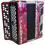 Tula Etud - 205 M2 Button Accordion, Brand New Russian Bayan