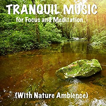 Tranquil Music for Focus and Meditation with Nature Ambience