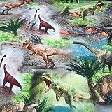 Dinosaurier Stoff Jersey Elastisch Digitaldruck Dinos - 25