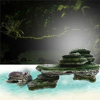 Amazon.es: gengyouyuan - Bases para acuarios / Acuáticos: Productos ...